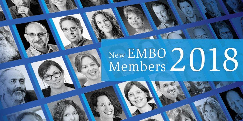 Lea Sistonen elected as new EMBO member